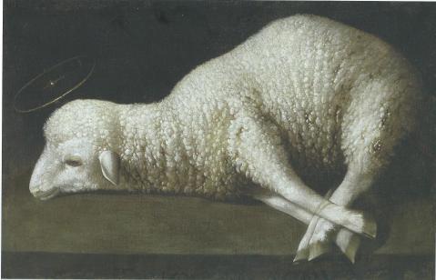 agneau-zurbaran