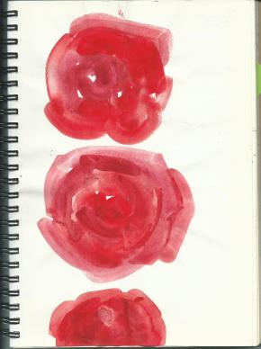hg-reve-roses